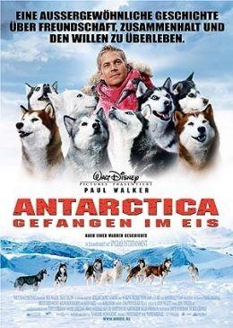 Antarctica - Gefangen im Eis  Buena Vista...ermany