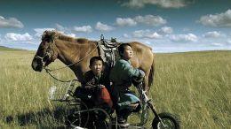 Mongolian Ping Pong  Rapid Eye Movies GmbH