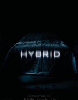 'Hybrid 3D'