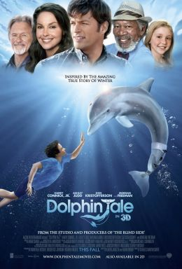 A Dolphin's Tale