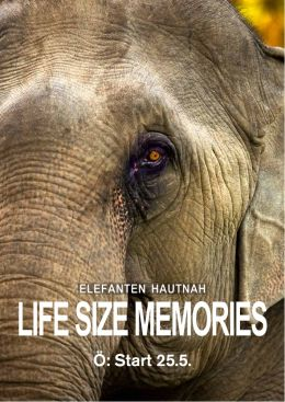 Life Size Memories