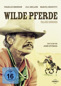 Wilde Pferde - Valdez Horses