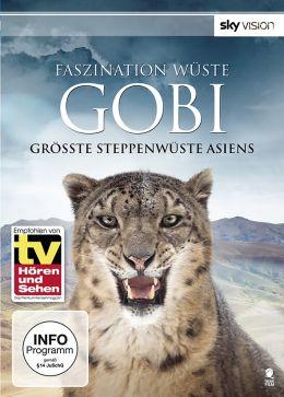 Faszination Wüste: Gobi