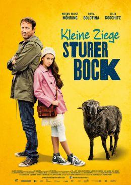 Kleine Ziege, Sturer Bock