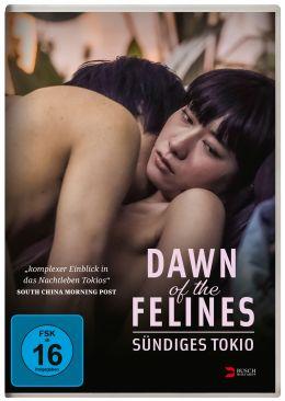 Dawn of the Felines