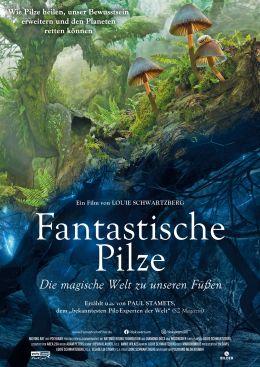 Fantasische Pilze   Die magische Welt zu unseren Füßen